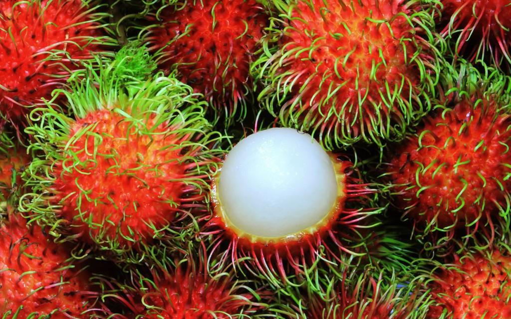 rambutan fruit sharon fruit