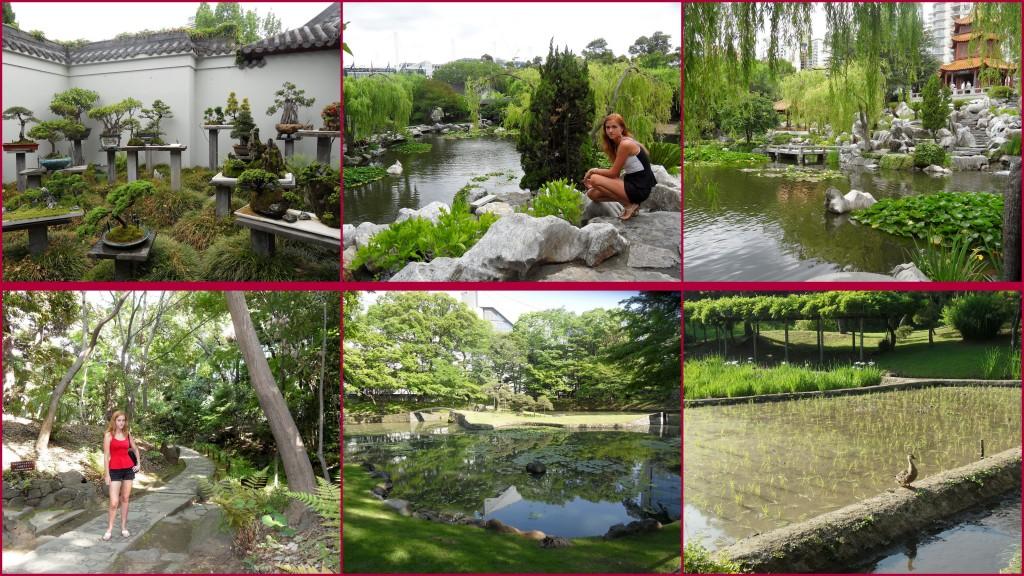 Above: Japanese garden - Sydney Below: garden in Tokyo