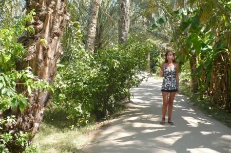 oasis tunisia