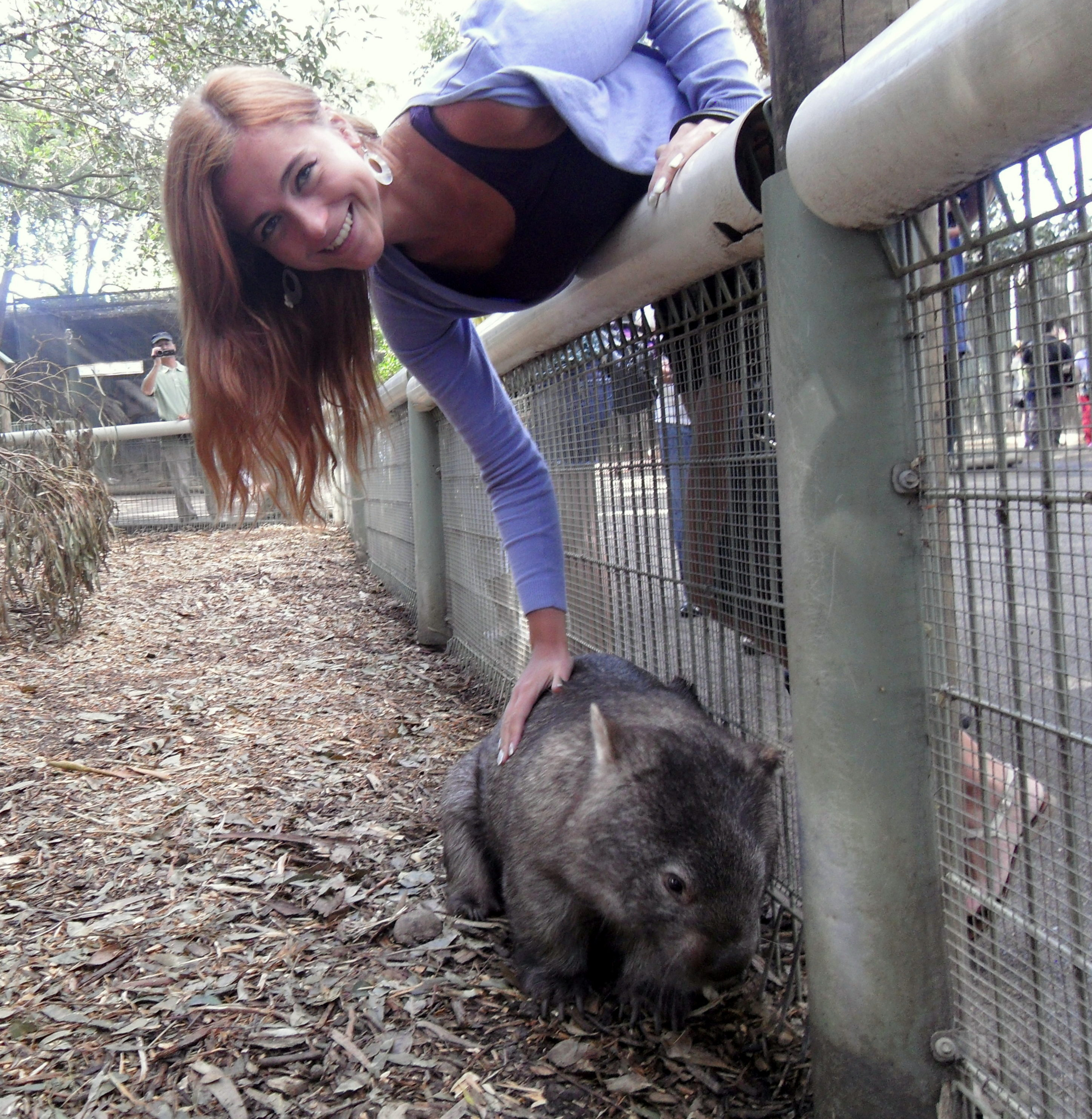 Why Visit Featherdale Wildlife Park Near Sydney Anna