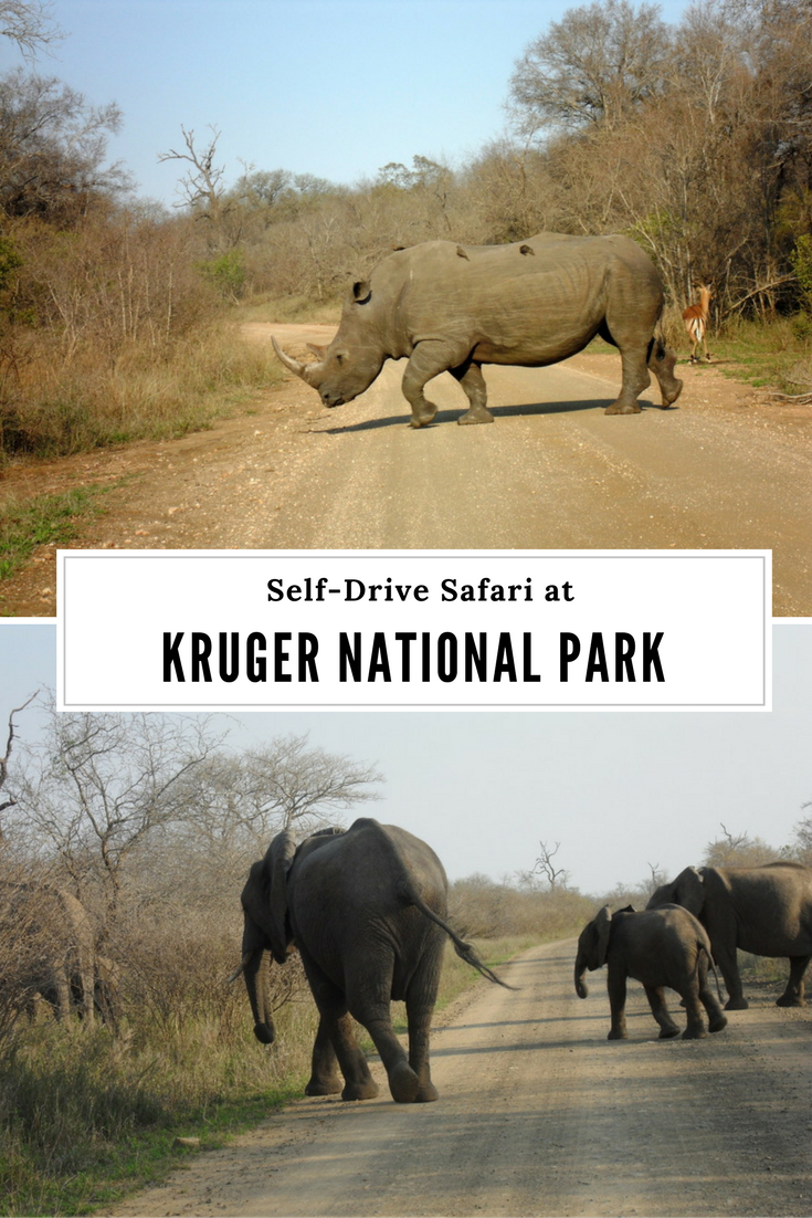 Kruger National Park Self-Drive Safari