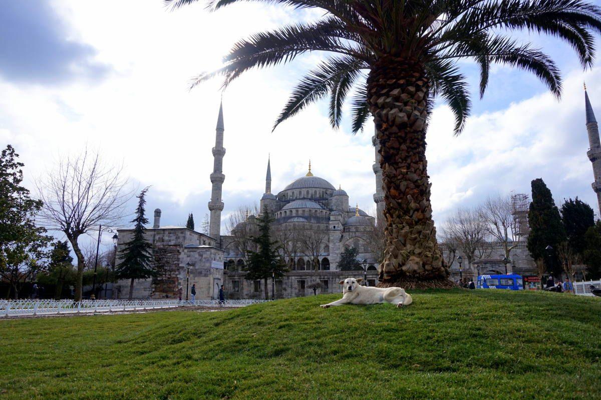 is Istambul safe
