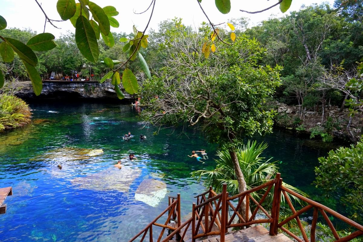 The best cenotes in mexico ultimate guide anna everywhere for Jardin del eden