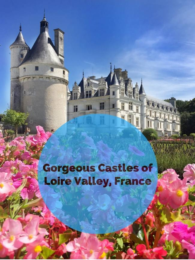 Day Trip to Loire Valley Castles