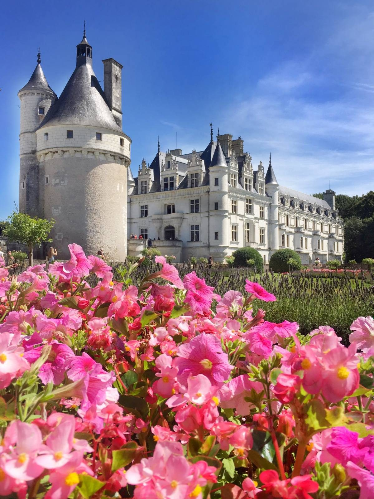 Day Trip to Loire Valley Castles Chambord Chenonceau Amboise