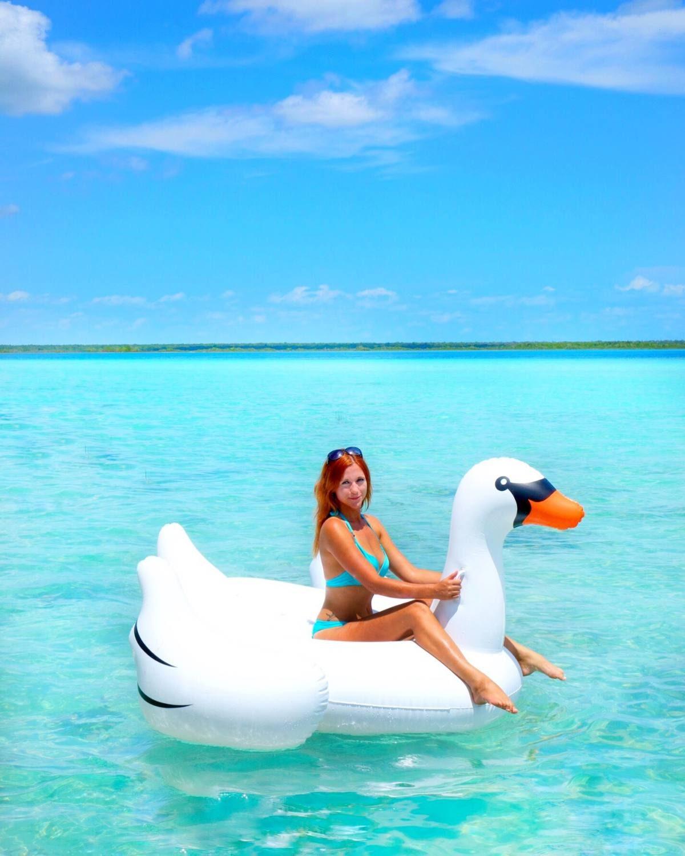 Instagram Bacalar swan