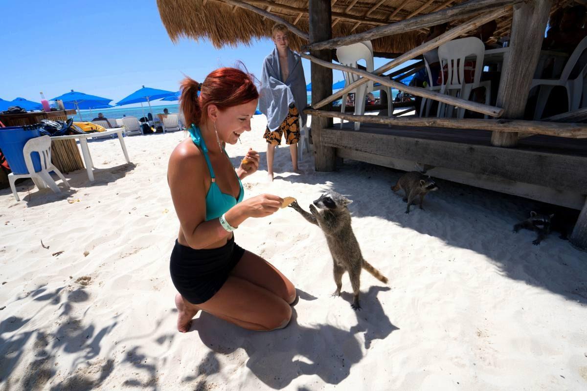 Making new friends in Cozumel!