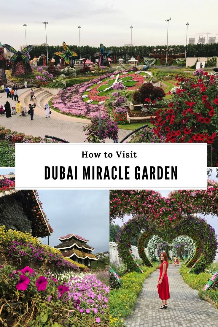 How to Visit Dubai Miracle Garden