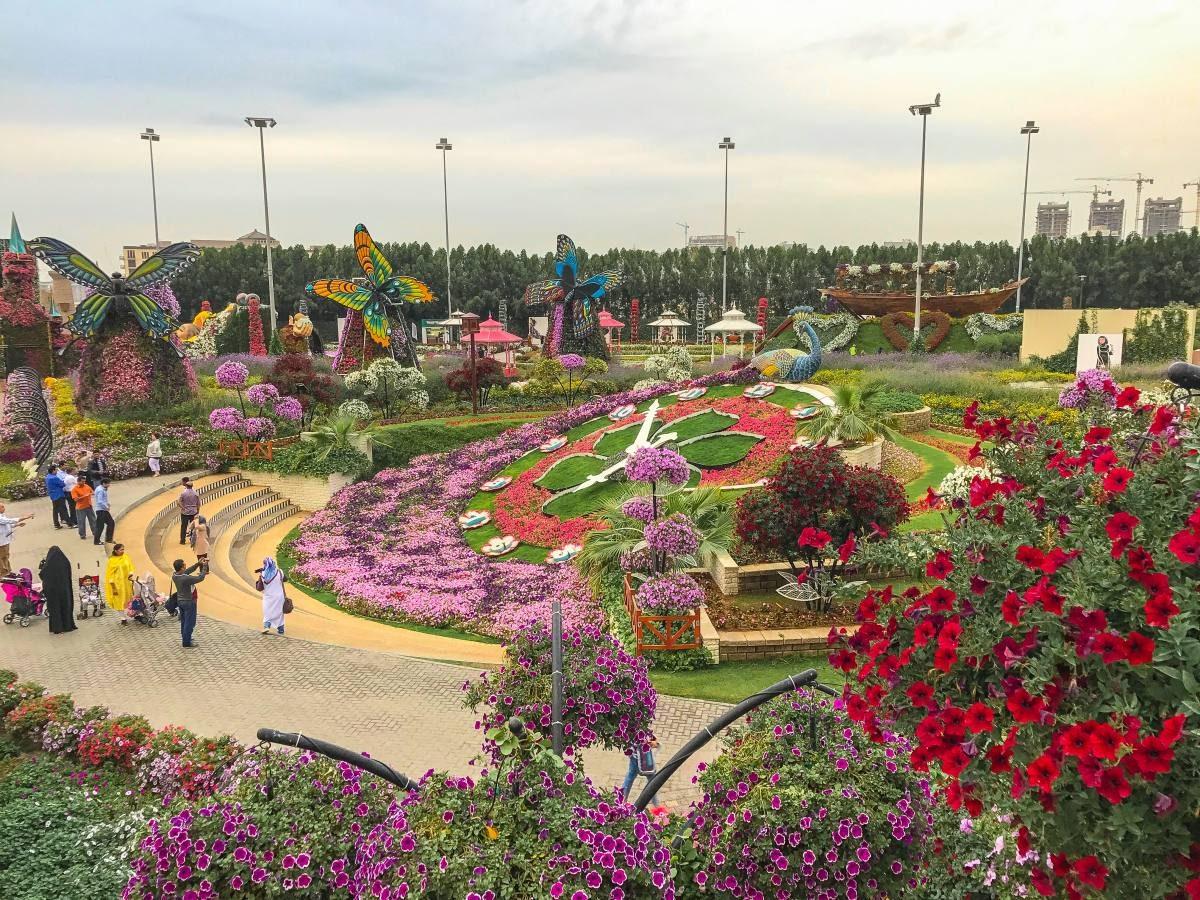 Dubai Miracle Garden Must Visit Place In Dubai Anna