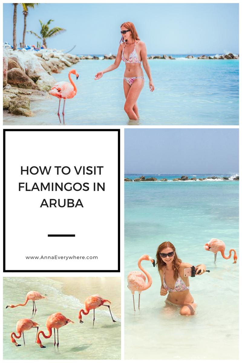 How to Visit Flamingos in Aruba: Renaissance Private Island