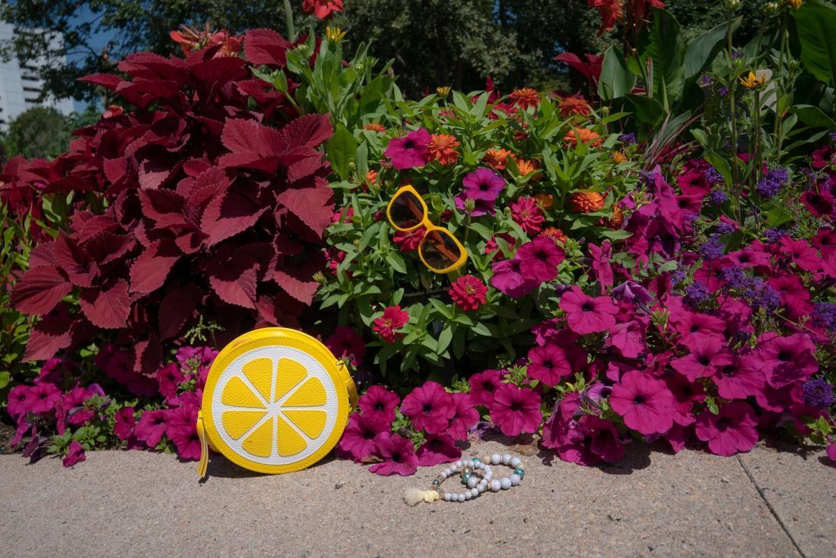 Lemon Bag Accessories