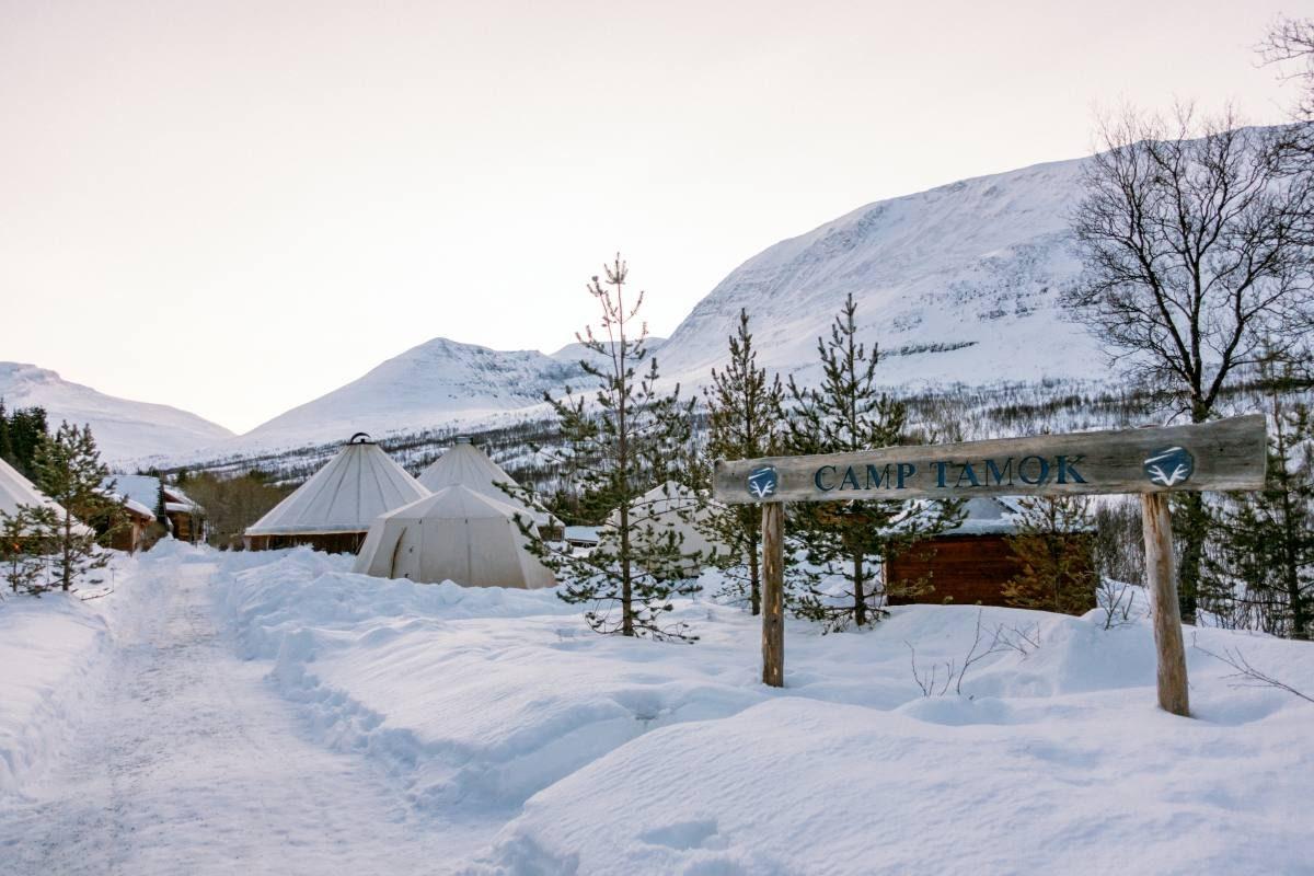 Camp Tamok