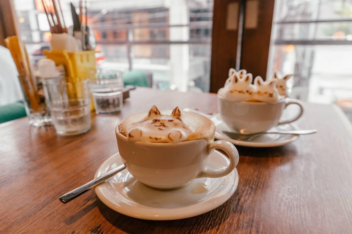 3d coffee Japan Tokyo