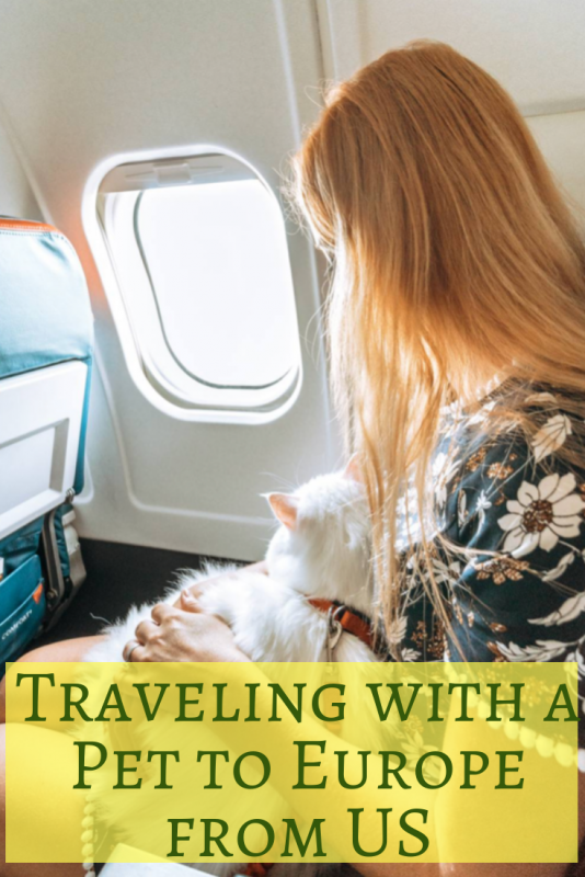 Traveling with a Pet from the US to Europe