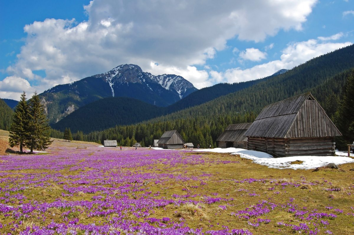 zakopane day trip from krakow