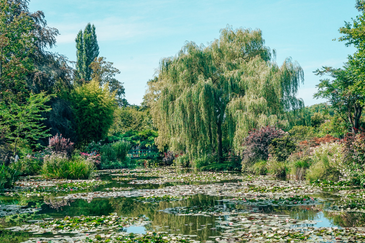 Giverny: Claude Monet's Garden Just an Hour from Paris