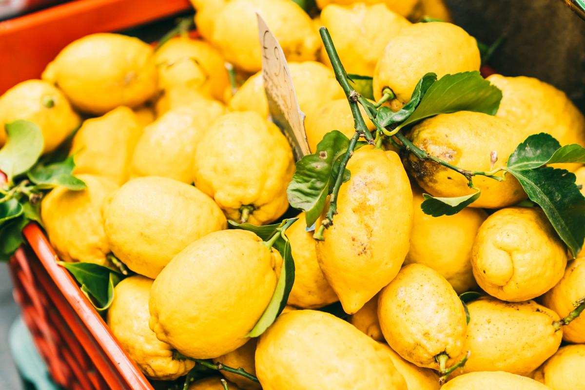 lemons Amalfi