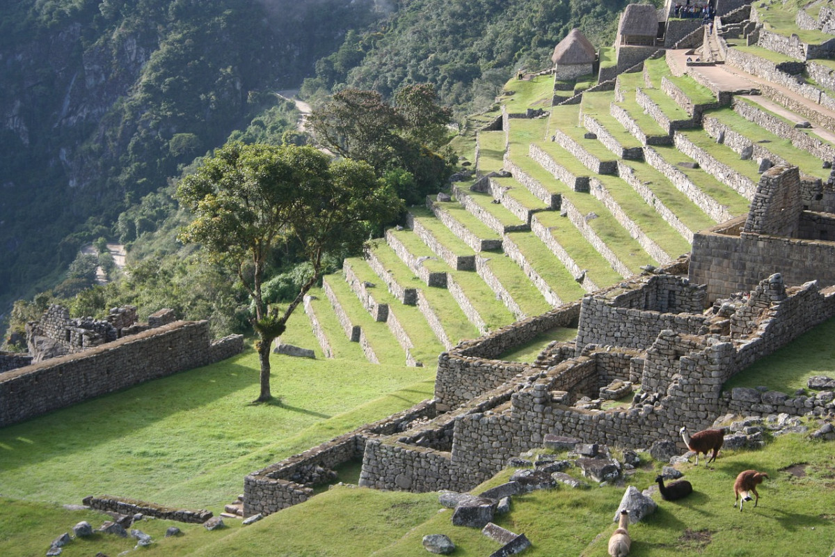 Tips for Visiting Machu Picchu