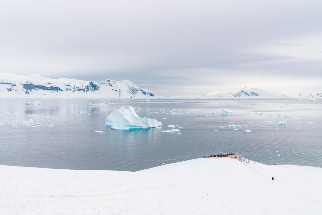 traveling to Antarctica