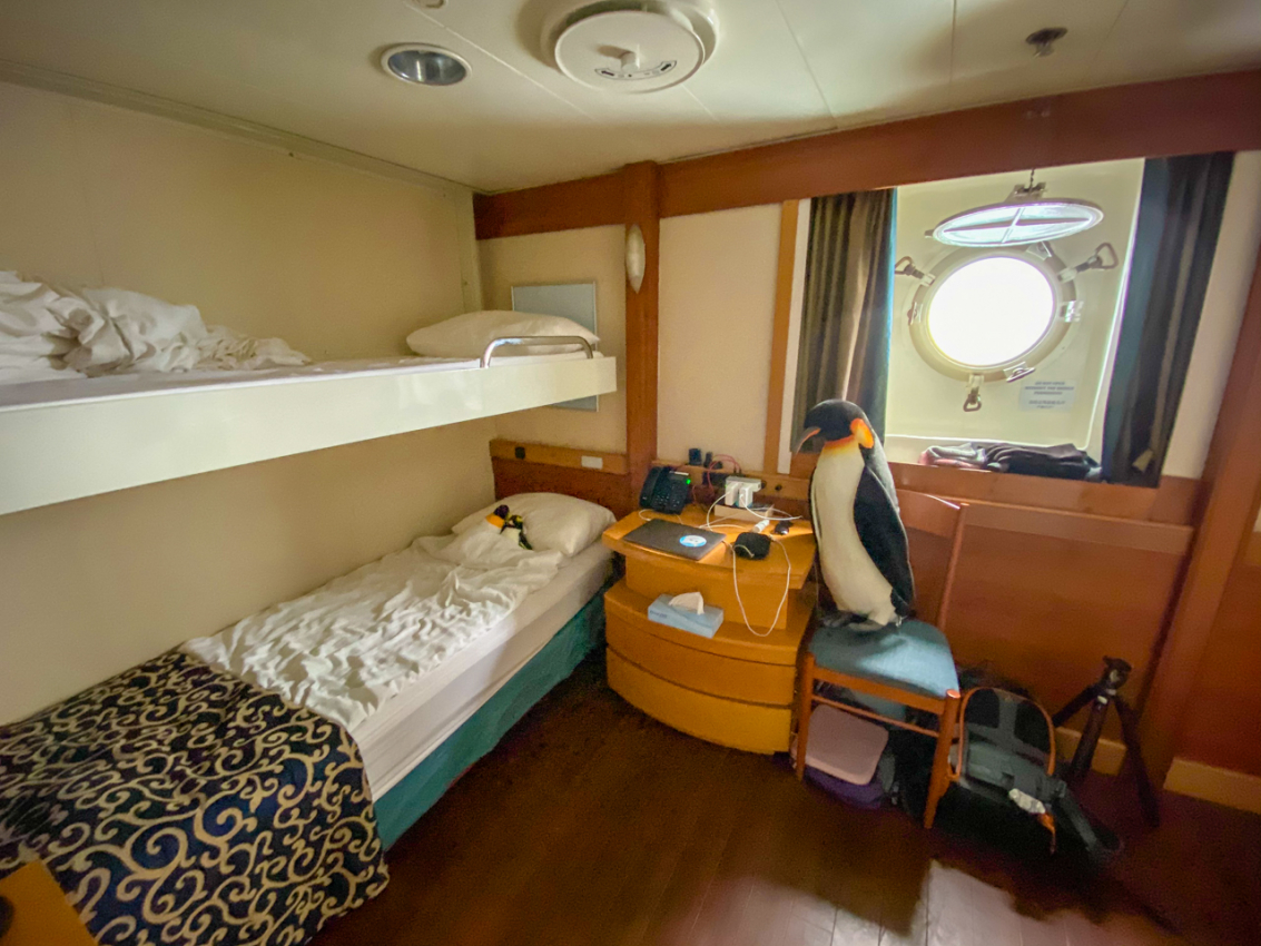 Ocean Endeavour cabin