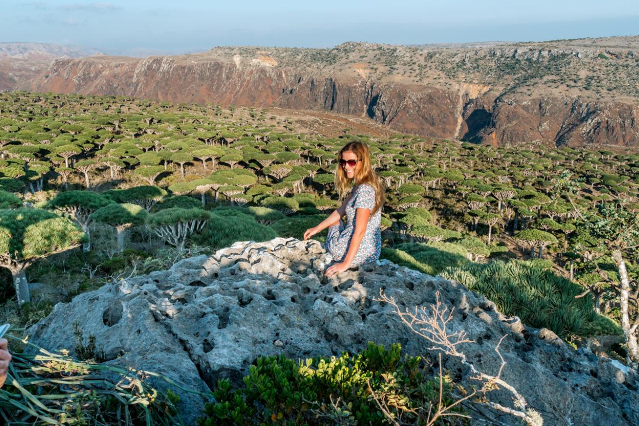 visiting Socotra